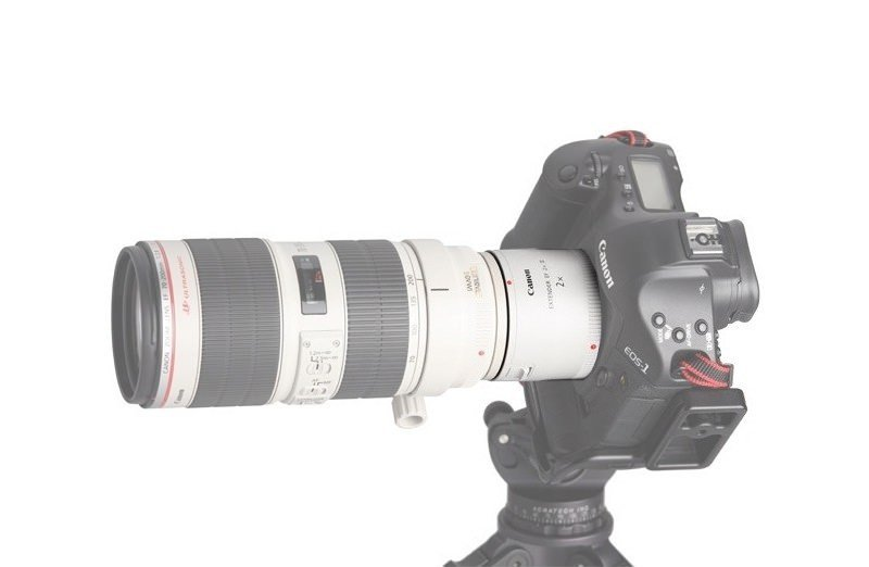 Teleconverter Canon Extender EF 2.0X III – Exemplo